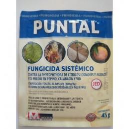 PUNTAL 45G FUNGICIDA SISTEMICO