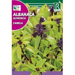 ALBAHACA CANELA