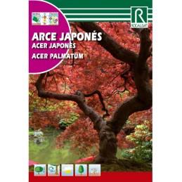 ARCE JAPONES