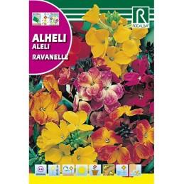 ALHELI RAVANELLE